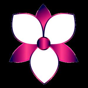 calyxia design lorraine sawicki personalised visuals